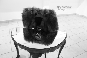 "This real fur shawl, as displayed beautifully with the wood furniture and mirror, titled ""Dumb Valet"" comments on the almost unimaginable fashion trends from decades past where animal skins would be worn as clothes. Note how the traditional ball and claw style furniture compliments Tully's notions of the way within which human kind views its animal counterpart."